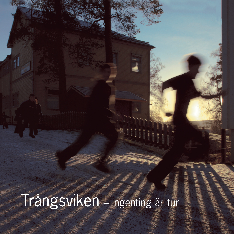 Trångsviken : ingenting är tur av Karin Johansson